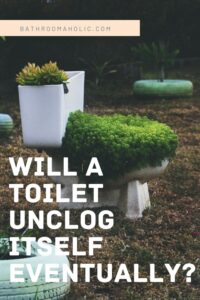 Will A Toilet Unclog Itself Why You Shouldn T Wait