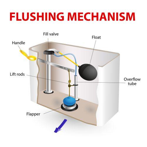flush mechanism diagram