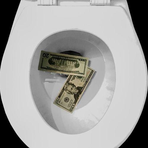 toilet money flush